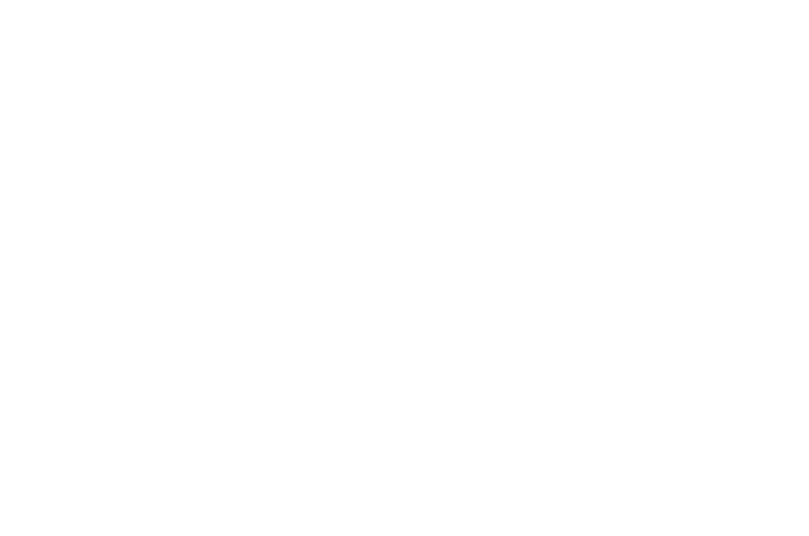 International  Forum of Performance Art